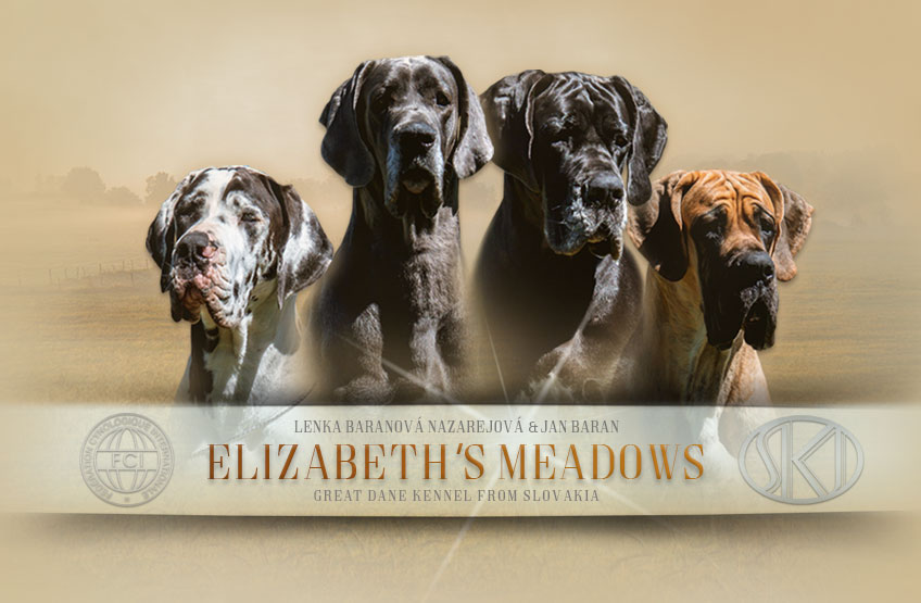 ELIZABETH'S MEADOWS